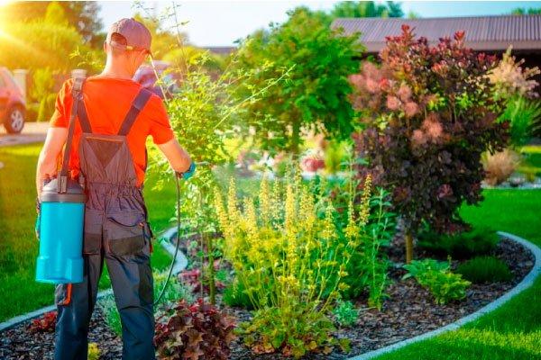 Uso apropiado de insecticidas