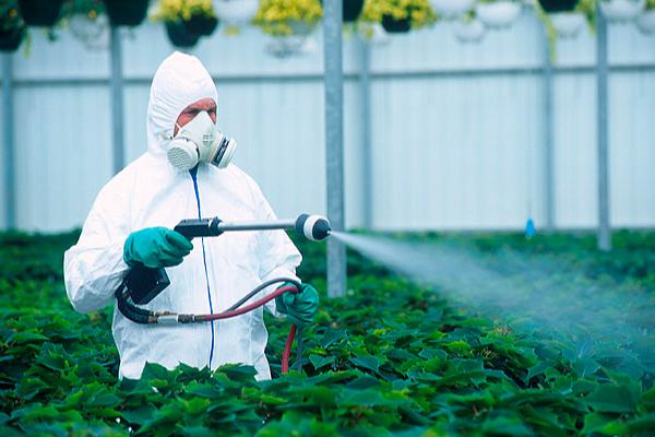 Importancia de los fungicidas en la agricultura